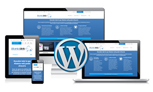 I will  create WordPress website and develop WordPress website