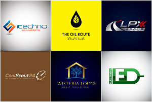 I will make 3 custom Logo Designs for you within 24 hours, With Unlimited Revisions