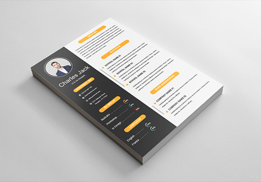professionally design and edit your resume, cv, and cover letter