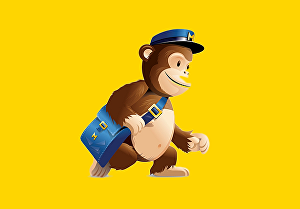 I will do editable mailchimp email template, custom or drag and drop newsletter