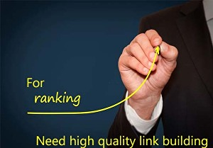 I will create 25 niche relevant high quality social media profile , Link building