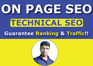 I will Do On Page SEO Optimization for Top Google Ranking & Traffic