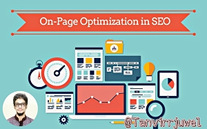 I will Do Pro On Page Optimization on your WordPress Blog  and Fix Issue