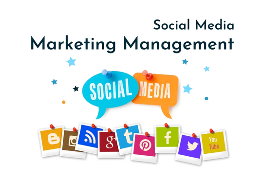 be your social media marketing manager for 7 days