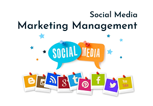 I will be your social media marketing manager for 7 days