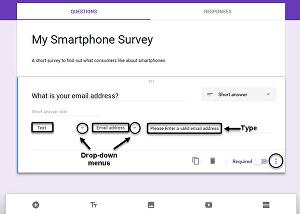 I will Create a World Class Surveys Form for your business