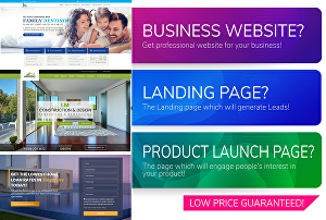 I will do web design and build professional website or landing page