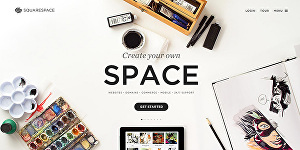 I will build or redesign your Squarespace website