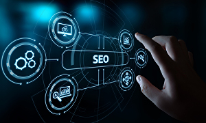 I will  do On-Page SEO Optimization