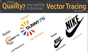 I will do vector tracing, redraw logo or image