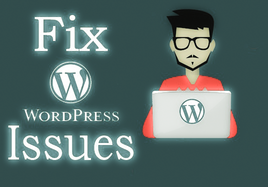 fix any WordPress issues, errors, and customization