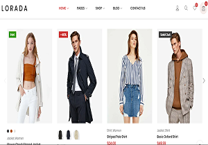 I will build your business  eCommerce website using WordPress