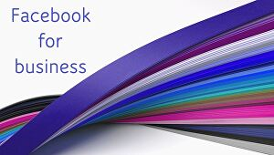 I will create and promote your facebook page