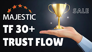 I will increase Majestic Trust Flow TF by 30+