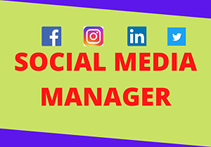 I will be your professional  social media marketing ads manager