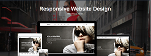 I will design WordPress website or blog with all responsive features