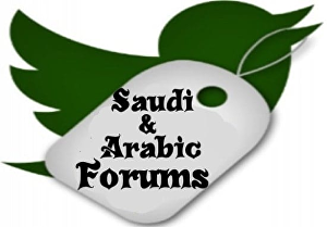 I will promote your website or service in 150 arabic forums