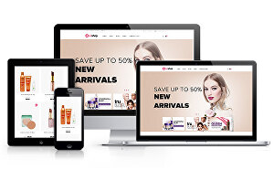 I will build you a branded profitable dropshipping Shopify store  website