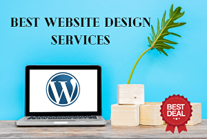 I will create Responsive Business WordPress Website Design for you