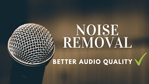 I will remove noise and clean your audio professionally