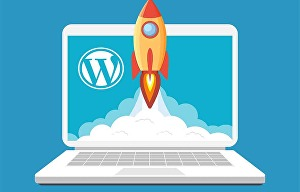 I will improve your wordpress page speed