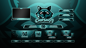I will design a professional twitch overlay and logo