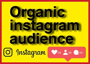 I will Help you to grow your instagram audience