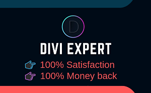 I will Fix Any kind Of Divi Theme Issue error problem