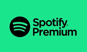 I will do organic spotify promotion streams and spotify monthly listeners