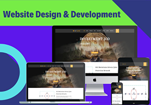 I will design an amazingly professional responsive website