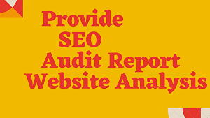 I will Do SEO audit report