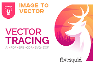 I will redraw, vectorize or convert image to vector