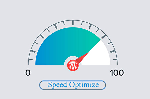 I will optimize your WordPress site