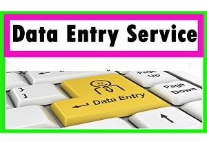 I will do data entry, copy paste