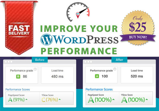 cccccc-speed optimize wordpress site professionally