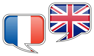 I will translate 300 words - French to English or English to French