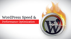 I will speed optimize wordpress site professionally