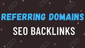 I will build 500 referring domain SEO backlinks for google ranking