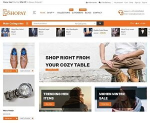 I will create  ecommerce website or wordpress online store website