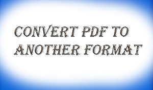 I will edit your PDF file and convert it to any format as per your requirements.