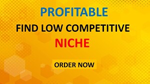 I will do high Profitable Niche and low competitive  Micro Niche research