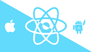 I will develop React Native App
