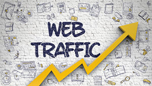 I will send Daily 1000 real web traffic Worldwide to your website for ONE MONTH