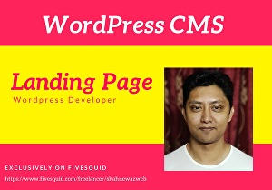 I will redesign, rebuild, clone landing page using WordPress CMS