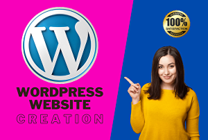 I will fully design and develop any WordPress website