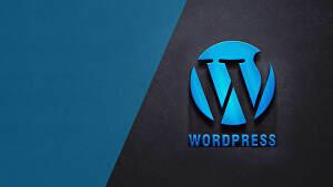 I will Create or Customize Wordpress website for you