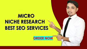 I will provide high profitable low competitive micro-niche and SEO niche research for your site