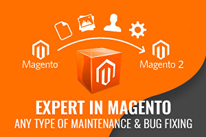 I will design and develop eCommerce Magento Store
