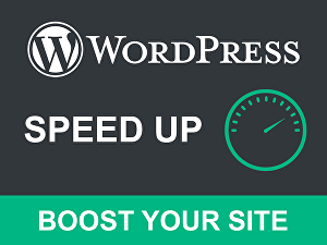 I will speed up WordPress website