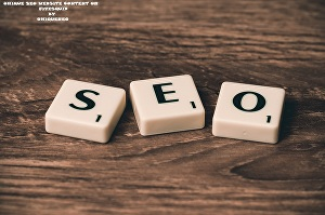 I will Provide SEO Website Content in 24 hours